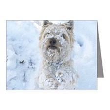 Cairn Terrier Dog, standing, Note Cards (Pk of 10)