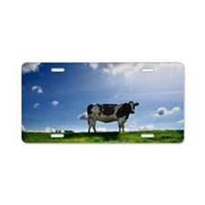 What seems like a happy cow Aluminum License Plate