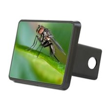 Fly on leaf Hitch Cover