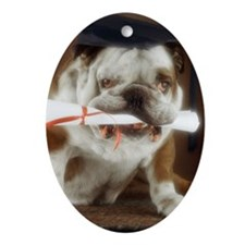 Bulldog wearing mortarboard and ho Ornament (Oval)