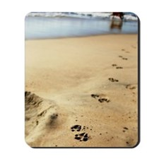 Dog paw print in sand beach. Mousepad
