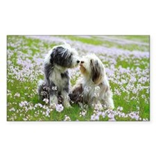Two Bearded Collie dog kissing Decal