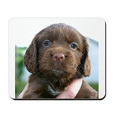 Puppy Dog Mousepad