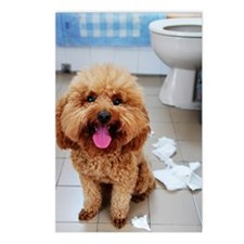 Naughty brown poodle dog Postcards (Package of 8)