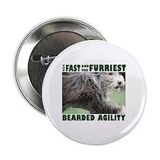 Beardie Agility! Button