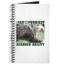 Beardie Agility! Journal