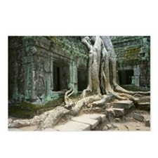 Roots growing over a temp Postcards (Package of 8)