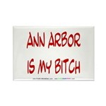 Ann Arbor is my BITCH Rectangle Magnet (10 pack)