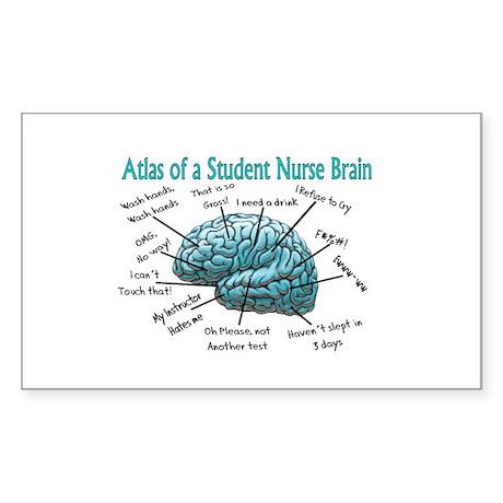 Nursing Student IV 2011 Sticker