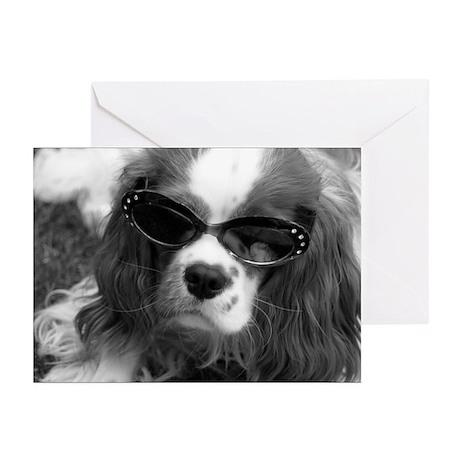 Movie Star Cavalier Greeting Cards (Pk of 10)