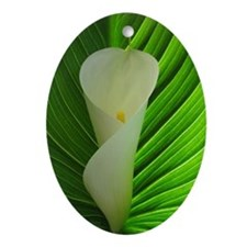 White calla lily with leaf Ornament (Oval)