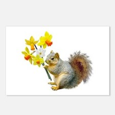 Squirrel Daffodils Postcards (Package of 8)