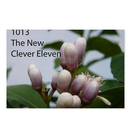"""1013 (the band) """"The New Clever Eleven"""" CD Cover P"""