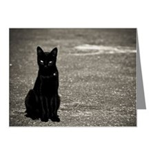 Black cat on street Note Cards (Pk of 20)