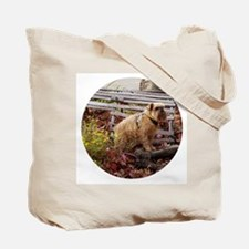 Rough Brussels Griffon Tote Bag