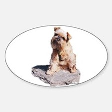 Rough Brussels Griffon Oval Decal