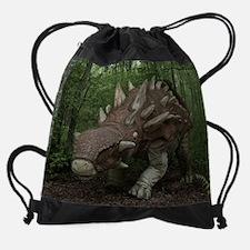 Dinosaur 3786 Drawstring Bag