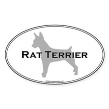 Rat Terrier Oval Decal