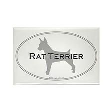 Rat Terrier Rectangle Magnet