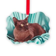 Burmese cat Ornament