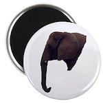 elephant5 Magnet