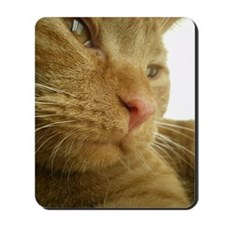 Ginger Tabby cat just waking up Mousepad