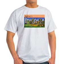 Nebraska Greetings Ash Grey T-Shirt