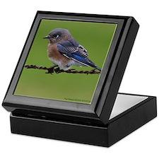 Bluebird Keepsake Box
