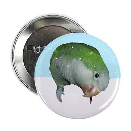 """Snowy Quaker Parrot 2.25"""" Button (10 pack)"""