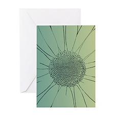 Teal Daisy Greeting Card