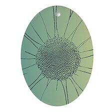 Teal Daisy Ornament (Oval)