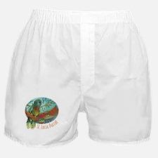 St Lucia Parrot Boxer Shorts