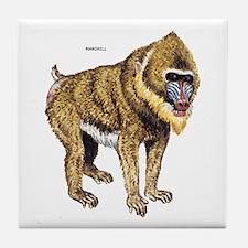 Mandrill Monkey Ape Tile Coaster