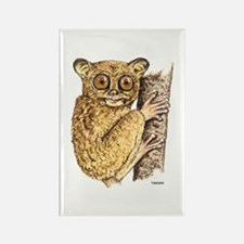 Tarsier Animal Rectangle Magnet