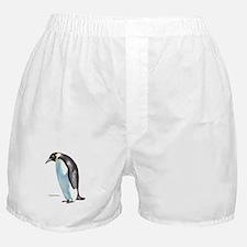 Emperor Penguin Bird Boxer Shorts