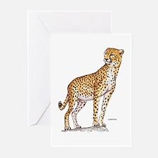 Cheetah Big Cat Greeting Cards (Pk of 20)