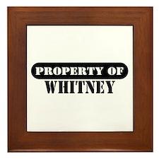 Property of Whitney Framed Tile