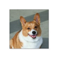 welsh corgi Sticker