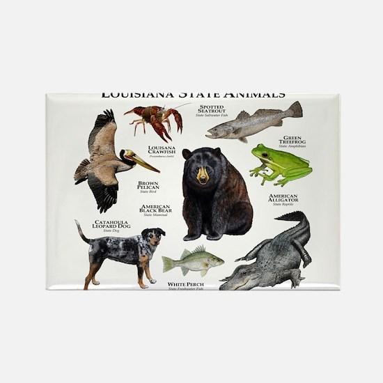 Louisiana State Animals Rectangle Magnet
