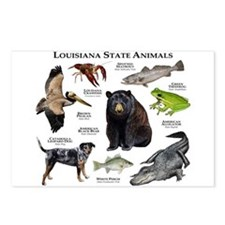 Louisiana State Animals Postcards (Package of 8)