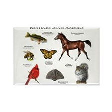 Kentucky State Animals Rectangle Magnet