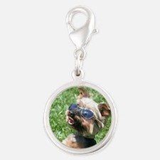 yorkshire terrier Charms