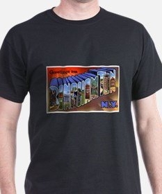Binghamton New York Greetings (Front) T-Shirt