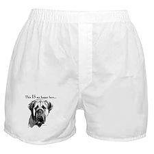 Charcoal 14 Boxer Shorts