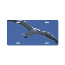 Seagull flying in blue sky Aluminum License Plate