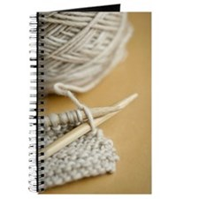 Knitting needles in position to start a pr Journal