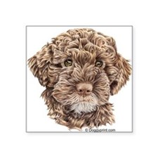 Lagotto Rectangle Sticker