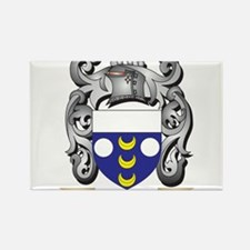 Dolan Coat of Arms - Family Crest Magnets