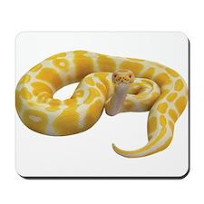 Albino Ball Python Mousepad