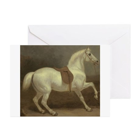 Beautiful White Horse Greeting Cards (Pk of 20)